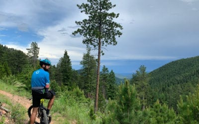 Are eBikes Good for the Environment?